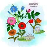 Hand painted set flower on watercolor background royalty free illustration