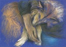 Hand painted Sleeping collie dog Stock Image