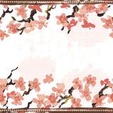 Hand painted textured blooming sakura horizontal seamless border Royalty Free Stock Photos