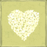 Hand painted textured white spring flowers  heart Stock Photography