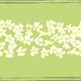 Hand painted textured white spring flowers  horizontal seamless Stock Photo