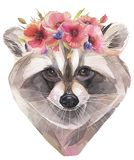 Hand painted watercolor illustration. Cute raccoon with poppy wreath. royalty free illustration