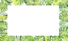 Watercolor border frame green tropical leaves. monstera, palm tree leaves, banana plant leaves. stock illustration