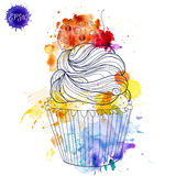 Hand painted watercolor cherry muffin. stock illustration