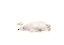 Hand painted watercolor dizzy bear seeing stars Stock Photos