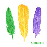 Hand painted watercolor feathers closeup isolated. Ethnic feather colorful set. Royalty Free Stock Images