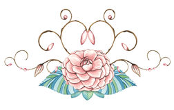 Hand painted watercolor floral design Stock Image