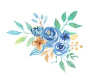 Watercolor Florals Blue Berries Leaves Arrangement Wedding Flowers. Hand Painted Watercolor flowers, leaves and berries in pretty blue floral arrangements vector illustration