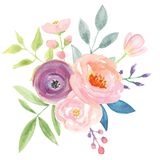 Watercolour Berries Bouquet Arrangement Pretty Pink Wedding Flowers Stock Photos