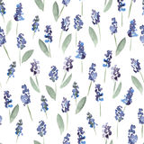Hand painted watercolor flowers seamless pattern. Stock Photos