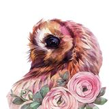 Cute watercolor owl. stock photo