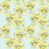 Hand painted watercolor illustration. seamless pattern with lemon tree branch elements. royalty free illustration