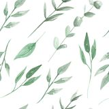 Leaves Watercolor Seamless Pattern Green Leaf Painted. Hand Painted Watercolor Leaves Seamless Pattern, arrangements Leaves and eucalyptus stock illustration