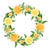 Hand-painted Watercolor Lemons And Oranges Wreath Royalty Free Stock Photos