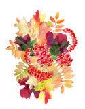 Hand painted watercolor mockup clipart template of autumn leaves Stock Image