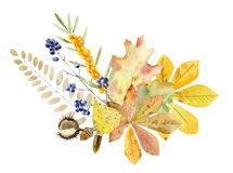 Hand painted watercolor mockup clipart template of autumn leaves Royalty Free Stock Photography