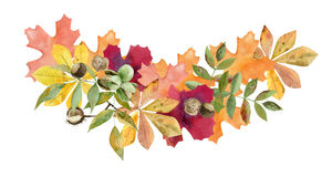 Hand painted watercolor mockup clipart template of autumn leaves stock illustration