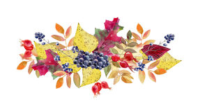 Hand painted watercolor mockup clipart template of autumn leaves Royalty Free Stock Photo