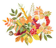 Hand painted watercolor mockup clipart template of autumn leves Royalty Free Stock Image