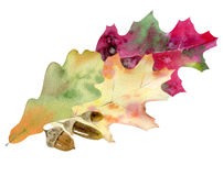 Hand painted watercolor mockup clipart template of autumn leves Royalty Free Stock Photography