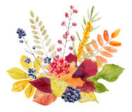 Hand painted watercolor mockup clipart template of autumn leves Royalty Free Stock Photo