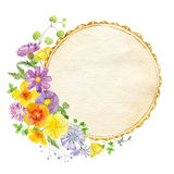 Hand painted watercolor mockup clipart template of wild flowers Stock Photography