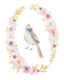 Hand painted watercolor oval frame. Stock Image
