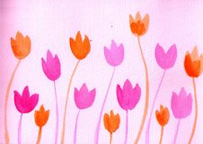 Tulips. Hand-painted watercolor picture showed many pink and orange tulips Royalty Free Stock Photography