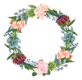Hand-painted Watercolor Roses, Succulents And Peonies Wreath Royalty Free Stock Photography