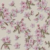 Hand Painted Watercolor Sakura Textured Blooms and Wreaths Pattern For Valentine,. Easter, Mother`s Day, Wedding, and Engagement. Hand Painted Watercolor Apple/ Royalty Free Stock Photos
