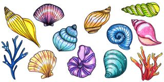 Hand painted watercolor set of shells and corals vector illustration