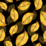 Hand painted watercolour autumn background of falling leaf. Seamless pattern of watercolor autumn yellow leaves of elm, hand painted watercolour autumn Stock Photos