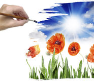 Hand painting meadow flowers royalty free illustration