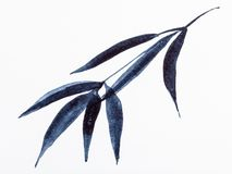 Bamboo branch drawn by black watercolors stock photo