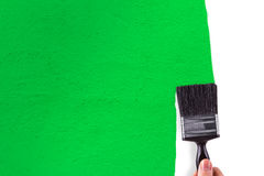 Hand Painting White Wall with Green Stock Images