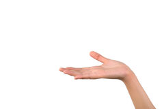 Hand palm up on white background Stock Images