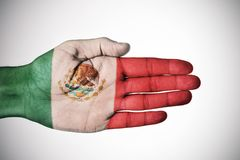 Hand patterned with the flag of Mexico. The palm of a young caucasian man patterned with the flag of Mexico, against a-white background with a slight vignette Stock Photography