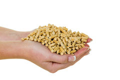 Hand with pellets as an old natie energy Stock Images