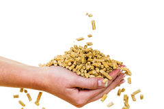 Hand with pellets as an old natie energy Stock Photography