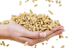 Hand with pellets as old natie energy Stock Images