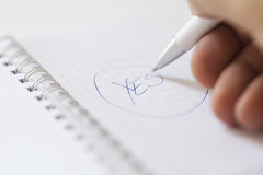 Hand with pen vote for yes royalty free stock photos