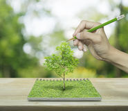 Hand with pencil drawing a tree growing from an open book on woo. Den table over green tree blur background, ecological concept Royalty Free Stock Photos