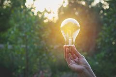 Hand of person holding light bulb for Idea and creativity,. Success, solar energy concept Stock Images