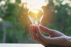 Hand of person holding light bulb for Idea and creativity,. Success, solar energy concept Stock Photography