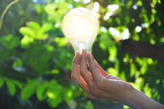 Hand of person holding light bulb for idea or success or solar e Royalty Free Stock Photos
