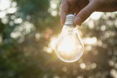 Hand of person holding light bulb for idea or success or solar e. Nergy concept Royalty Free Stock Photography