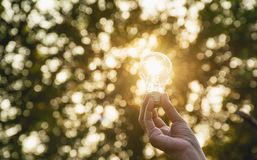 Hand of person holding light bulb for idea or success or solar e. Nergy concept Stock Photography