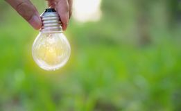 Hand of person holding light bulb for idea or success or solar e. Nergy concept Stock Image