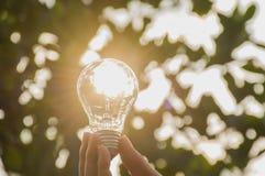 Hand of person holding light bulb for idea or success or solar e. Nergy concept Stock Photos