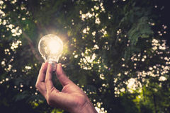 Hand of person holding light bulb for idea or success Stock Photos